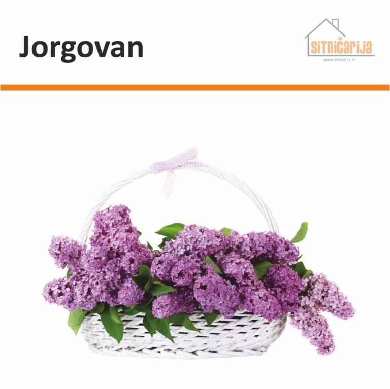 Naljepnica za prozore - Jorgovan u obliku bijele košare s ljubičastim jorgovanima u njoj