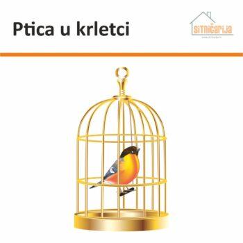 Naljepnica za prozore koja prikazuje šarenu ptičicu u zlatnoj krletci