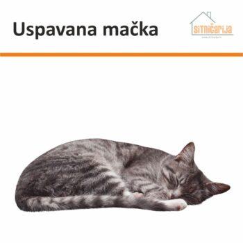 Naljepnica za prozore u obliku sive mačke koja spava